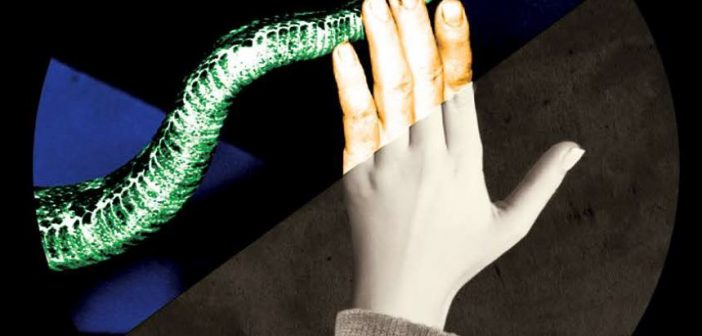 Faith and Folly — Taking Up Serpents, a New American Opera, Bows in Boston